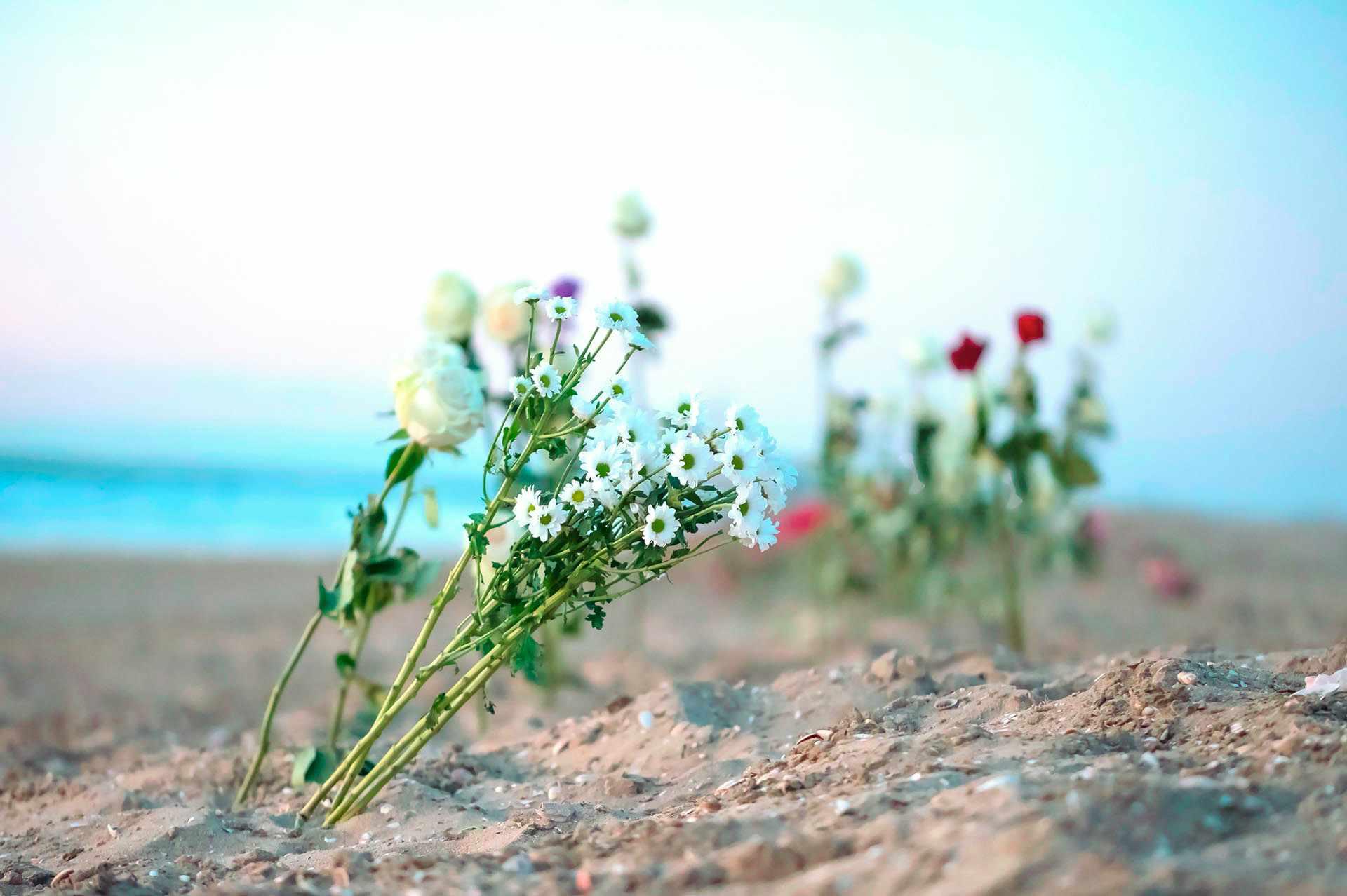 Trauer und Bestattung